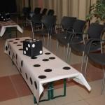 Festa RockaBilly 16.05.09 021-1280
